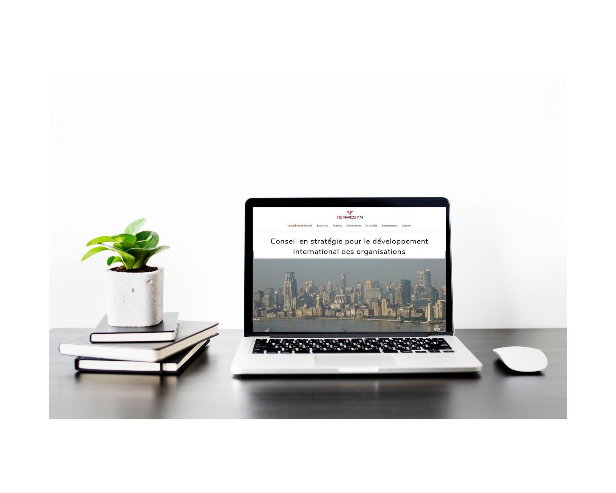 site web Hermesyn