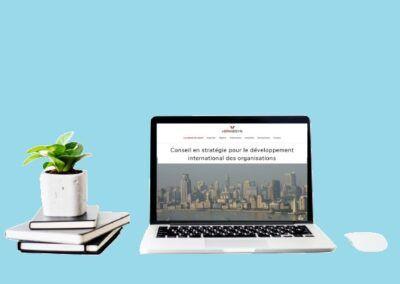Site web de Hermesyn, conseil en stratégie pour le développement international des organisations